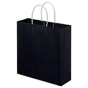 その他 (まとめ) スーパーバッグ ライナー手提げ袋 中 ヨコ320×タテ320×マチ幅110mm 黒 0998900140 1パック(10枚) 【×10セット】 ds-2234792