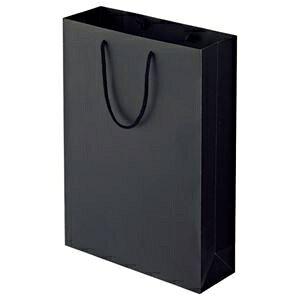 その他 (まとめ) TANOSEE マットコート手提げ袋 L ヨコ320×タテ450×マチ幅110mm ブラック 1パック(10枚) 【×5セット】 ds-2223605