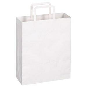 その他 (まとめ)TANOSEE 紙手提袋 平紐 小ヨコ260×タテ320×マチ幅100mm 白無地 1パック(50枚)【×20セット】 ds-2304721