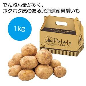 その他 【16個セット】北海道産男爵いも1kg 2561020