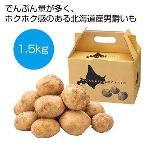 その他 【16個セット】北海道産男爵いも1.5kg 2561030