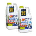 【2個セット】ニイタカ 洗濯槽クリーナー 縦型洗濯機用 大容量 2000ml SSC-01 塩素系洗浄液