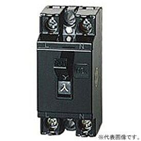パナソニック 【ケース販売特価 20個セット】 安全ブレーカ 電灯・分岐用 HB-1E型 2P1E 20A BS1112_set