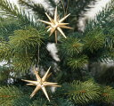 【金の星(小)】  木製 クリスマス ツリー オーナメント ドイツ ERZ アルビンプライスラー 【正規輸入品】