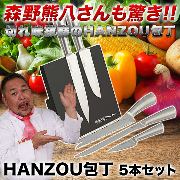 HANZOU 包丁5点セット 専用マグネットスタンド プライムダイレクト はんぞう包丁 アウトレット 在庫処分 (pd)(PB)