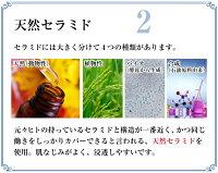 生セラピュア天然セラミド原液5ml生セラミド美容液スキンケア保湿