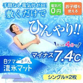 【シングル 2枚組】白くまきぶん 流氷マット 90x140cm プライムダイレクト (PD)