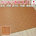 ダイニングラグマットペット用消臭クッションフロアラグCES8217(Y)約182×182cm日本製