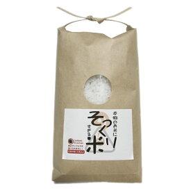 【送料無料】食品サンプル パーツ 工作用 本物のお米にそっくり過ぎる米 300g 仏壇 お供え