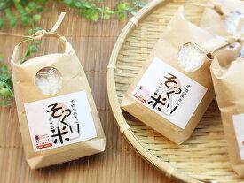 【送料無料】食品サンプル パーツ 工作に! 本物のお米にそっくり過ぎる米 200g 仏壇 お供え