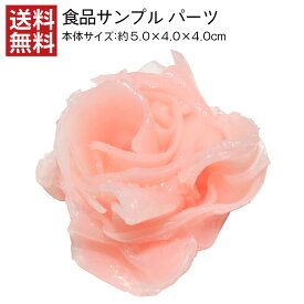 【送料無料】ガリ 食品サンプル パーツ 料理模型 リアル 日本製 高品質 展示 生姜 寿司 フェイクフード 小道具 食品模型 フードサンプル