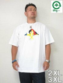 (10/31まで特別送料)大きいサイズ メンズ LRG(エルアールジー)「ROOTLINE TREE」TEE<ホワイト> 2XL 3XL USA アメリカ ストリート系 ブランド 半袖 Tシャツ