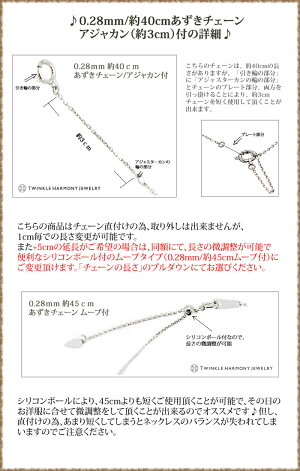 0.28mm/45cmムーブチェーン説明