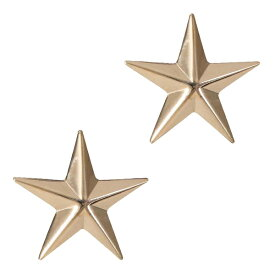 Rothco ピンバッジ 米軍階級章 将官級 2個セット [ ゴールド ] ピンズ ミリタリーバッジ ミリタリーバッチ 記章 徽章 襟章 肩章 胸章 袖章 臂章 ランクバッジ