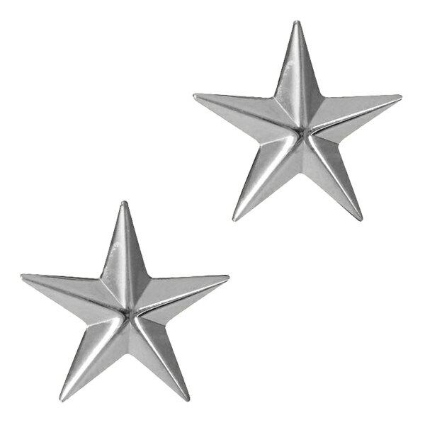 Rothco ピンバッジ 米軍階級章 将官級 2個セット [ シルバー ] ピンズ ミリタリーバッジ ミリタリーバッチ 記章 徽章 襟章 肩章 胸章 袖章 臂章