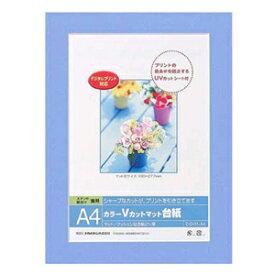 Nakabayashi ナカバヤシ DigioカラーVカットマット台紙 A4 ブルー DGVM-A4-B/V