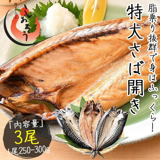 さば サバ 鯖 干物 特大サイズ 約250〜300g×3尾