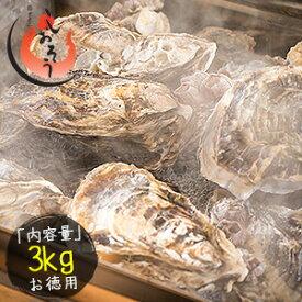 カキ 牡蠣 缶焼き かき 3kg(殻付き 約32〜42個)軍手 ナイフ付き[送料無料]