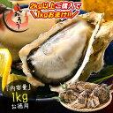 【2kg以上購入で1kgおまけ!】 カキ 牡蠣 かき 生食用 殻付き 1kg(10個前後) 冷凍 [送料無料] お中元 生牡蠣 生食…