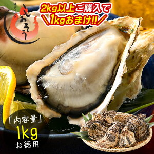 【2kg購入で1kgおまけ!】カキ 牡蠣 かき 生食用 殻付き 1kg(10個前後) 冷凍[送料無料]