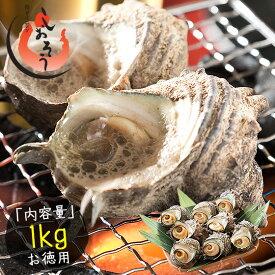 サザエ さざえ 特大サイズ 1kg 天然 活 (1粒110g以上/約7〜8粒)福井県産