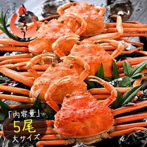 セイコガニ せいこがに せいこ蟹 大サイズ×5尾 福井 越前松葉 (着日指定不可)
