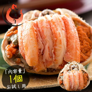セイコガニ 甲羅盛り 小サイズ 約80g×1個(甲羅横幅 約7.5cm)越前松葉 せいこ蟹