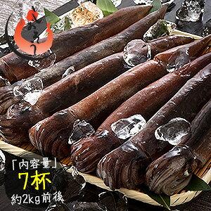 するめいか 7杯(約2kg前後)日本海産 スルメイカ[送料無料] いか イカ スルメイカ するめいか スルメ 冷凍イカ 刺身用 美味しい 刺身 刺し身 海鮮 ギフト 贈り物
