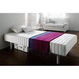 軽くて丈夫なフランスベッド脚付きマットレスベッド シングル 重さ約25kg[France Bed] LR0169