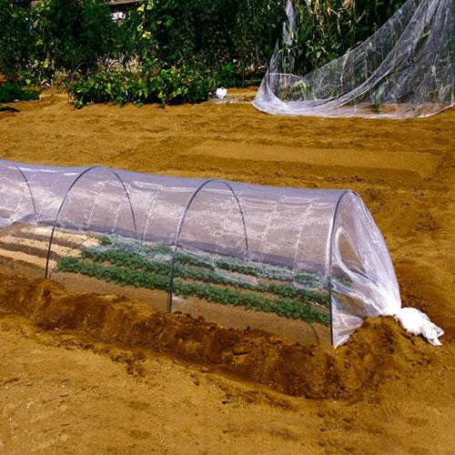 特売 約0.6mm目 目の細かい菜園用防虫ネット 小ロール 日本製 1.5m×20m