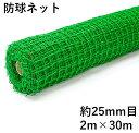 ダイオ 防球ネット ロール巻 約25mm目 2mx30m ダブル巻 ゴルフ 野球 各種球技 丈夫なネット 屋外使用可 ポリ有結ゴル…