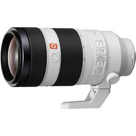SONY FE 100-400mm F4.5-5.6 GM OSS SEL100400GM
