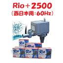 カミハタ Rio+2500 水中ポンプ (西日本用:60Hz) リオプラス