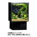 GEX グラステリア アグス ブラック OF-230 オールガラス オーバーフロー水槽 LEDライト付 淡水・海水両用 Glassterior…