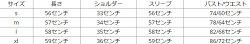シースルーメッシュトップスシャツ長袖シースルーブラウスカジュアルレディースシンプルハイネック大人可愛いトレンドパーティーフェスオードリー20代30代40代レトロジャパン被らないDIVAセレクト野外パーティーウルトラ