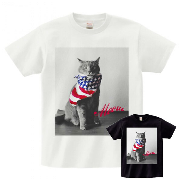 フォトt フォトT フォトプリント ネコ キャット 猫 プリント Tシャツ ブラック ホワイト グレー 半袖 T-shirts コットンシャツ 黒 大人メンズ 男性 オシャレ 40代 30代 ガールプリント tシャツ フォト プリント メンズ tシャツ 大きいサイズ tシャツ レディース