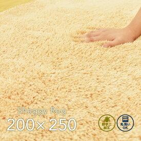 ラグ シャギー 200×250cm ベージュ 洗える アイビー ホットカーペット 対応 シャギーラグ リビング 長方形 オールシーズン 通年 カーペーット 絨毯 CLEARANCE 在庫一掃 2020RJM