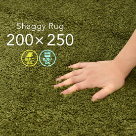 ラグ シャギー 200×250cm グリーン 洗える アイビー ホットカーペット 対応 シャギーラグ リビング 長方形 オールシーズン カーペーット 絨毯 CLEARANCE 在庫一掃