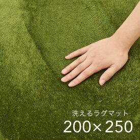 ラグ 200×250cm グリーン 洗える ホットカーペット 対応 軽量 デイジー リビング 長方形 オールシーズン カーペーット 絨毯 CLEARANCE 在庫一掃