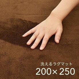 ラグ 200×250cm ブラウン 洗える ホットカーペット対応 軽量 デイジー カーペット 長方形 オールシーズン 絨毯 CLEARANCE 在庫一掃