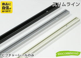 山伸 ピクチャーレール スリムライン 50cm