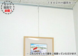 山伸 ピクチャーレール セット スリムライン 1450mm DIY応援セット ワイヤー 自在スリムフック 1m【額2枚分セット】送料無料(北海道・沖縄県は別途送料がかかります)