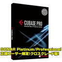 Steinberg Cubase Pro 9.5 クロスグレード 【Cakewalk SONAR Platinum/SONAR Professional正規ユーザー限定】