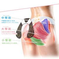 プレスリムのヒップアップEMSは幅広い筋肉に対応できる4パッド使用。