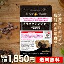【定期購入 送料無料 機能性表示食品】ブラックジンジャー代謝粒 DMJえがお生活 31日分 日本製 | ブラックジンジャー …
