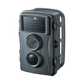 【お取り寄せ】サンワサプライ(SANWA SUPPLY)赤外線センサー内蔵 セキュリティカメラ 防犯カメラ 乾電池式 防水|CMS-SC01GY