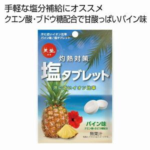 灼熱対策塩タブレットパイン味33g 80個セット @106/個