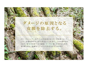 ◇送料無料◇DO-Sシャンプー&トリートメント(1000mlリフィル)セット