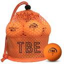 飛衛門 ゴルフボール メッシュバック マット オレンジ R&A公認球 メッシュバッグ マットボール 12球 1ダース 飛距離up (T-2MO) 【RCP】