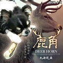 送料無料 【 XSサイズ 約15cm(細いタイプ) 】【 小型犬 】 鹿角 鹿の角 ペット 北海道産 犬のおもちゃ 誕生日プレゼン…